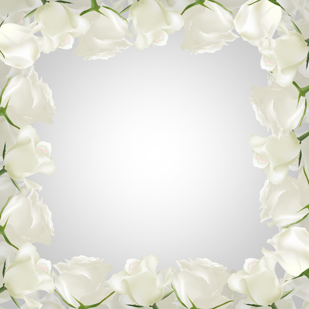perimeter: Realistic vector white roses on the perimeter. Light grey background. Greeting card with place for greeting text for any holiday. Mothers day card.