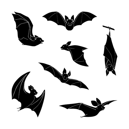 superstitious: Set of cartoon black bat in different stance on a white background. Hand drawing. Design elements.
