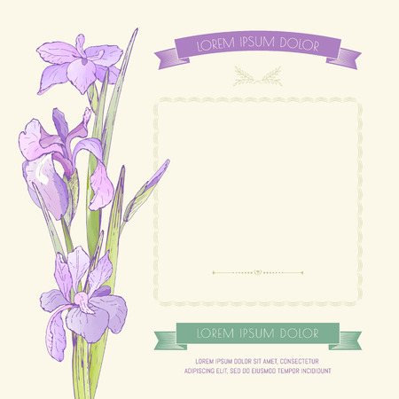 Card, banner with a bouquet of purple irises and place for text. Vetores