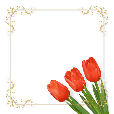Three red tulip in the lower right corner of the card and golden floral square frame with tulips on a white background. Vector illustration with place for text. Photo realistic delicate flower.