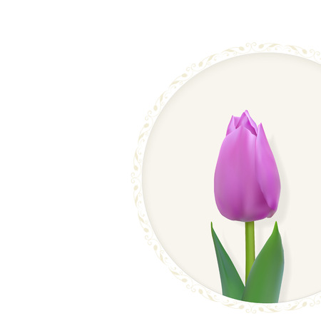 floret: Greeting card with delicate purple tulip in a round frame on a light background. Vector illustration with place for text. Photo realistic delicate flower.
