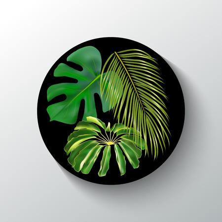 Bandera redonda negra con hojas individuales tropicales verdes. Vector fotorrealista hojas de palma exóticas. Diseño exótico para cosméticos, perfumes, productos para el cuidado de la salud, textiles, impresiones, invitaciones a fiestas, venta.