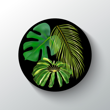 Black round banner with green tropical single leaves. Vector photorealistic exotic palm leaves. Exotic design for cosmetics, perfume, health care products, textile, print, party invitation, sale. Vettoriali