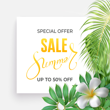 Photo realistic palm leaves, plumeria flower and handwriting lettering text Summer, special offer, up to 50 percent on a light background. Poster for promotions, magazines, advertising.