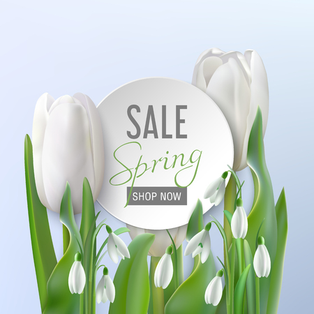 White round banner with text Spring Sale, shop now on a light blue background with beautiful white snowdrops and tulips. Poster for promotions, magazines, advertising.