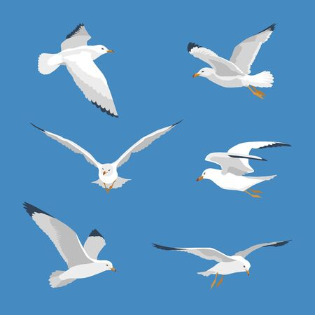 Set of simple flying seagull