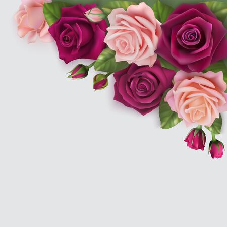 Vector card with delicate realistic roses