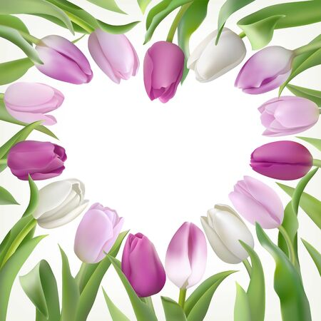 Many delicate Tulips with leaves on a white background with place for text in heart shapes. Photo-realistic vector light lilac and white flowers for any festive design, invitation, wedding, birthday
