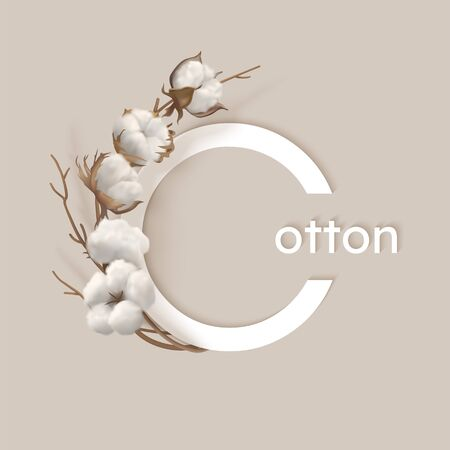 Vector with cotton branch Illustration