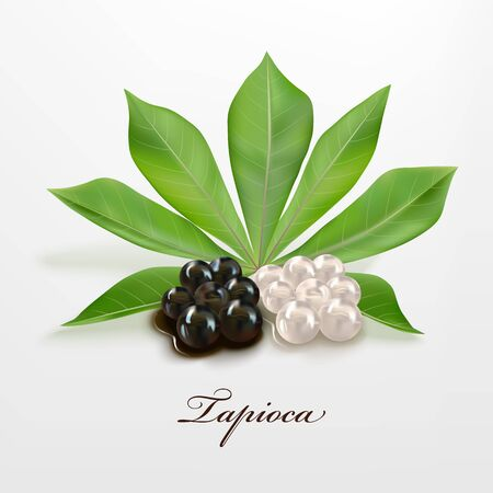 Tapioca black and white pearls Illustration