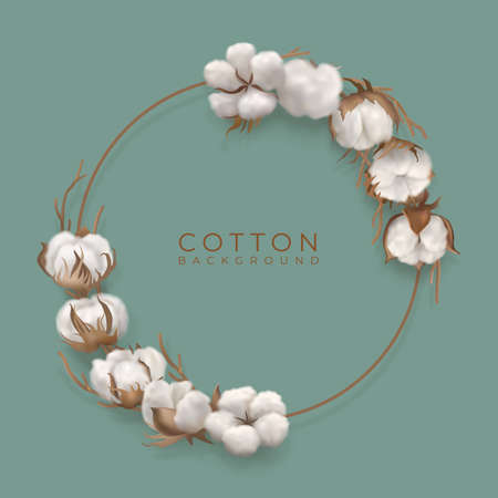 Cotton branches with circle frame Archivio Fotografico - 156693210