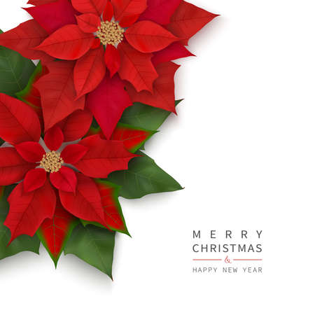 Merry Christmas and Happy New Year greeting card with Christmas flowers Vettoriali