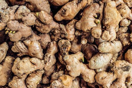 Lots of thick, unpeeled ginger roots lay on top of each other