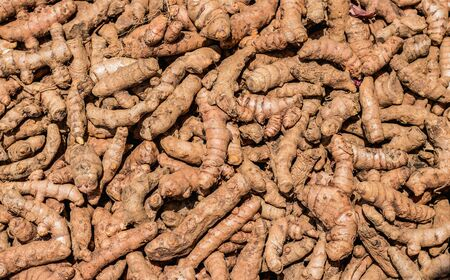 Lots of thin, unpeeled ginger roots lying on top of each other Reklamní fotografie
