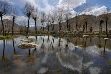 Lake in the mountains early spring: on the shore rows of trees grow, in the surface of the lake as in the mirror reflect the bare tree trunks, mountains and clouds, the Himalayas, Northern India. Stock Photo