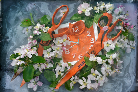 Art still life with two large orange scissors and square orange flowers among fresh apple tree flowers in water with paint divorces, the original painting for interior design.