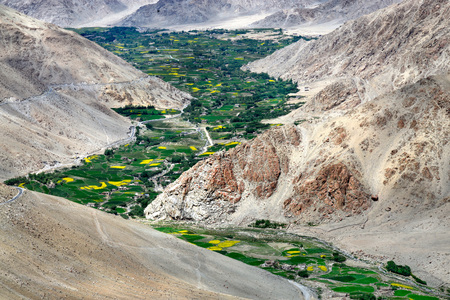 Mountain valley: high mountains are brown, the river bends along the bottom of the gorge and along the river bed numerous trees, fields and small houses small villages, the Himalayas, Northern India.