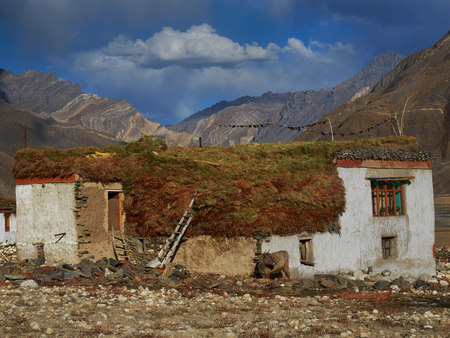Autumn in a mountain: white houses stand among the yellow valley, on the roofs lie large haystacks, near the wall there is a cow, October in the Himalayas. Stock Photo