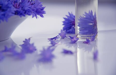 Abstract gentle background with flowers of blue cornflowers on a white table surface and a transparent glass with water shot at shallow depth of field.