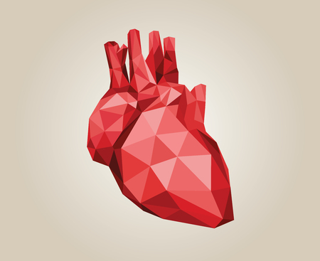Simple polygonal human red anatomical heart illustration