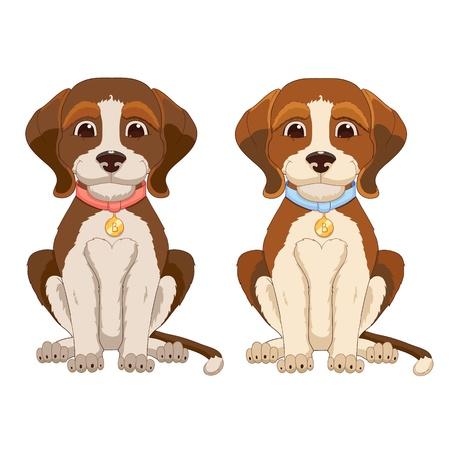 beagle puppy: Cute dog isolated on white background Illustration