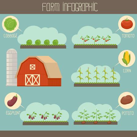 granary: Farm infografica Vettoriali