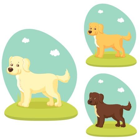 cute cartoon dog: Cute cartoon dog on lawn