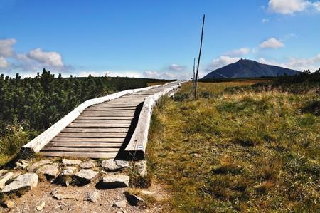 Hill Snezka and national park Krkonose photo