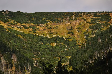 Long Valley in the national park Krkonose photo