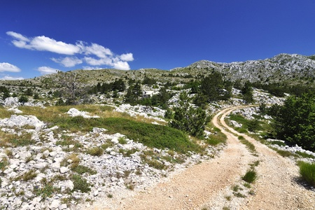 Way in The National park Biokovo - Croatia. photo