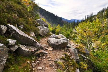 Mountain path in valley in the national park Krkonose photo