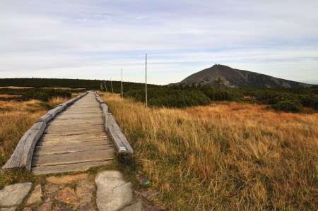 Hill Snezka and wood path in the national park Krkonose photo