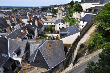 The city of Amboise in France, view from Chà ¢ teau Royal dAmboise.
