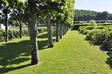 the loire: VILLANDRY, FRANCE - JUNE,2013 - Garden with Castle Villandry. The Chateau of Villandry is the last of the great chateau of the Loire built during the Renaissance in the Loire Valley. Editorial