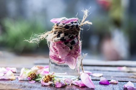 Rosa,Rose water with leaves beneficial for hair,skin and beauty products.