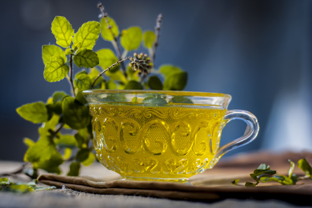 Tea of holy basil,tulsi,Ocimum tenuiflorum,in a transparent cup with leaves beneficial for heart diseases and stress. Stock Photo