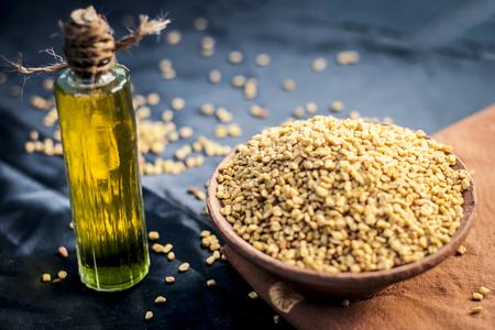 olej z Trigonella foenum-graecum, methi, kozieradka w glinianej misce z nasionami.