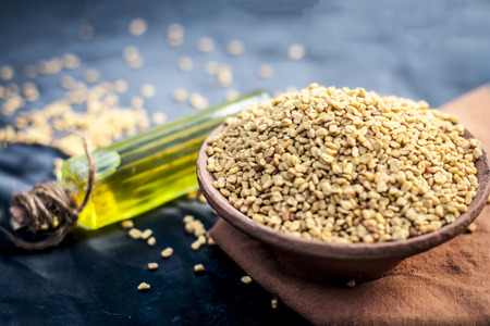 oil of Trigonella foenum-graecum,methi,fenugreek in a clay bowl with its seed. Stock Photo