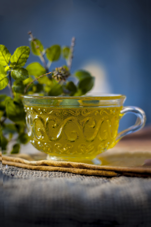 Tea of holy basil, tulsi, Ocimum tenuiflorum, in a transparent cup with leaves beneficial for heart diseases and stress.