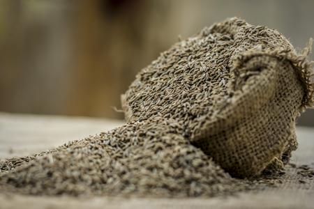 Raw organic cumin seeds,Cuminum cyminum  in  a gunny bag. 写真素材