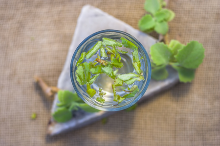 water of ajwain leaves and seeds,Trachyspermum ammi in a glass beneficial for weight loss.