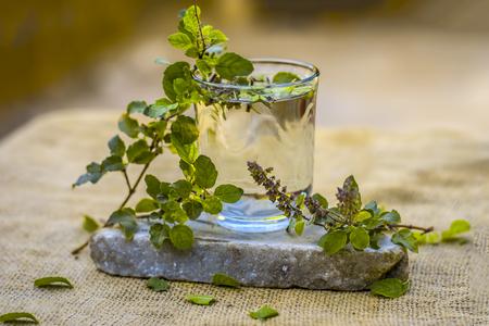 Water of holy basil, tulsi or Ocimum tenuiflorum in a transparent glass. Archivio Fotografico