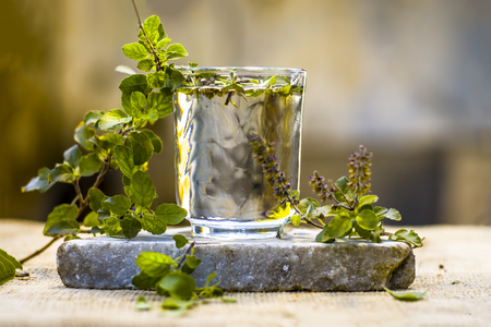 Water of holy basil, tulsi or Ocimum tenuiflorum in a transparent glass. Archivio Fotografico