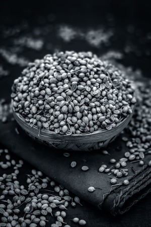 Close up of spice coriander seeds.