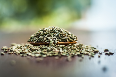Raw dried fennel seeds or variyali or Foeniculum vulgare in a brown plate on wooden surface.