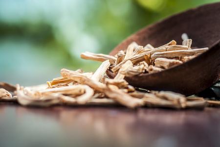 Hierba ayurvédica satavari, Asparagus racemosus con su polvo y raíz en un recipiente sobre una superficie de madera marrón en colores góticos oscuros para un sistema reproductivo femenino saludable, para un buen sistema reproductivo.