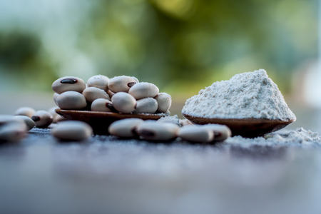 Ayurvedic herb kuanch,cowhage,Mucuna pruriens with powder in a brown plate with its powder and raw kuanch for premature ejaculation, erectile dysfunction and other sperm related diseases. Stockfoto