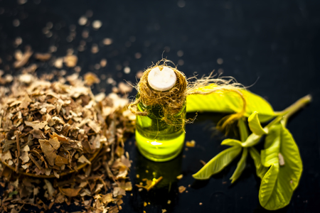 Close up of extracted beneficial oil of guava for weight loss, anti aging, and for god hair growth and for skin care with dried leaves of guava with fresh leaves in a bottle on wooden surface. Stock Photo