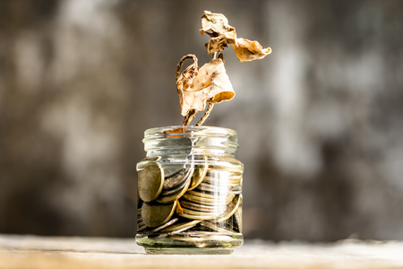 A glass jar full of coins and a dry plant dying through it.  Concept of loan,  mortgage,  inflation,  budget, over expenses,  payment, bankrupt, etc. Stock fotó
