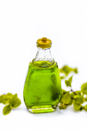Greed colored floral and medicinal essence of Mint or peppermint or phudina in a transparent bottle isolated on white. Stock Photo